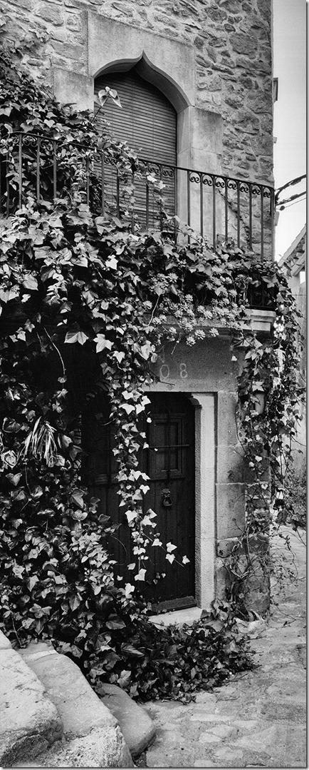 Madremanya Haus mit Efeu bw 6x12 3200 mit Efex niedrig