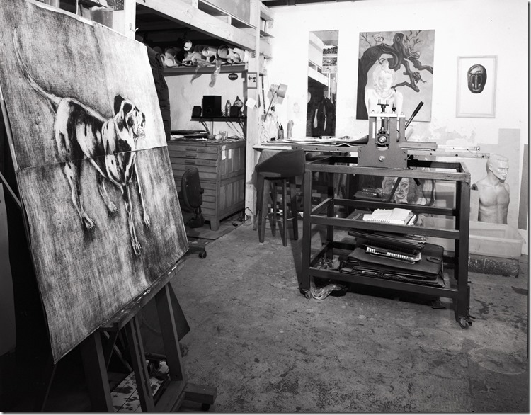 Yorman Studio BW 2400