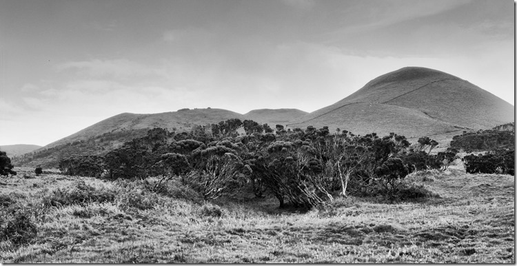 African Landscape Azores BW 3200 (Andere)