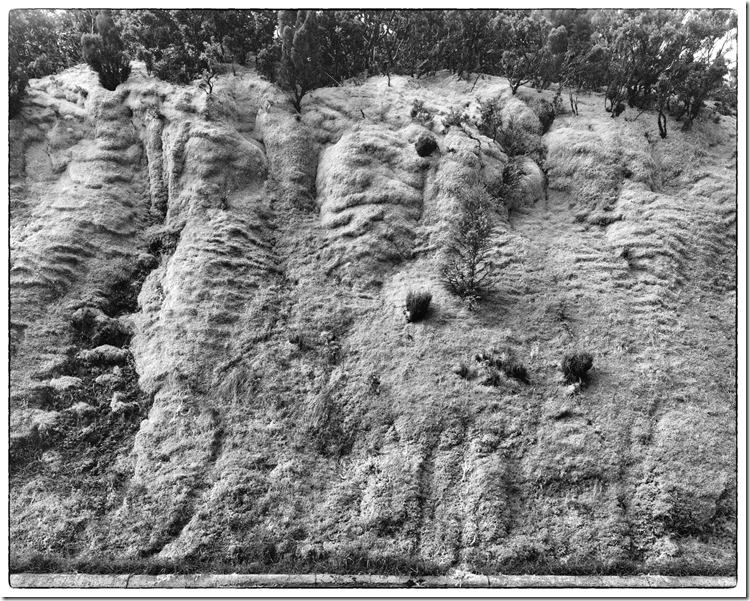 Volcanic Mossy Roadside BW 3200 (Andere)