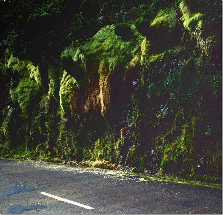 Green Roadside DIA 3200 (Andere)