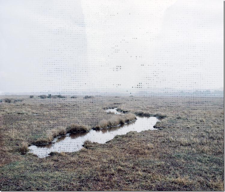 Norfolk Coastal Swamp C 2400 (Andere)