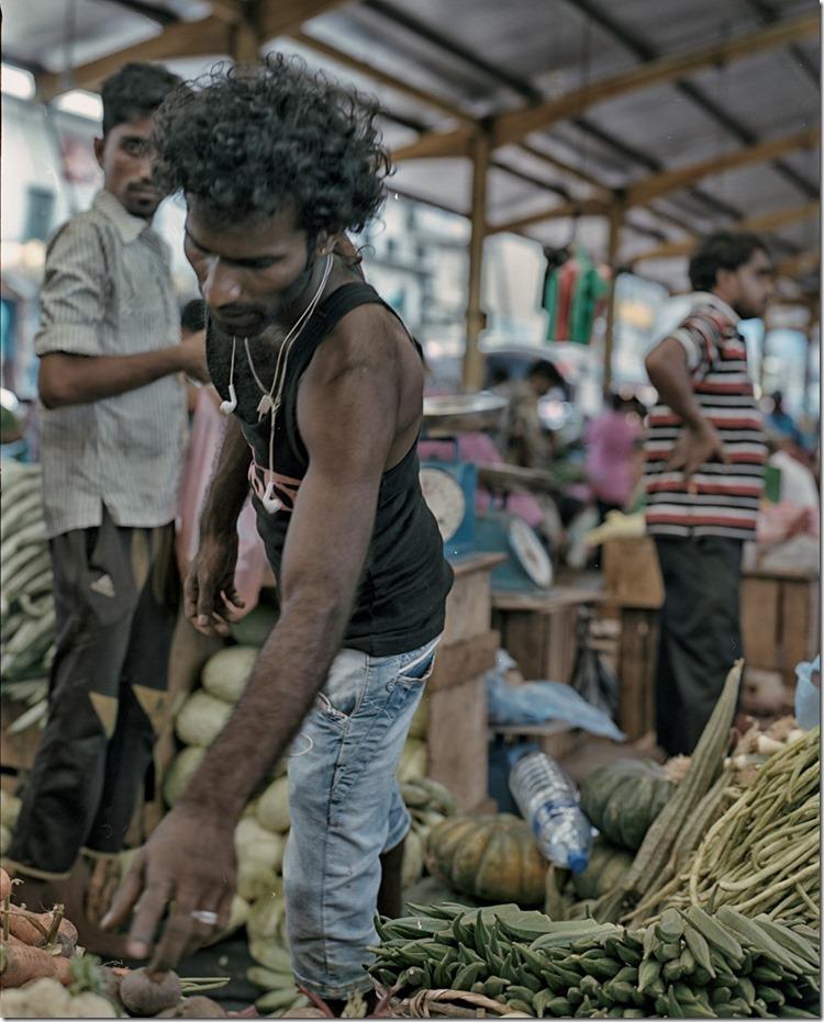 Lanka (11) Focus (Andere)