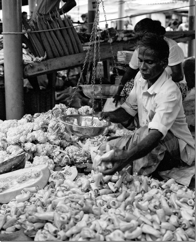 Lanka (84) (Andere)