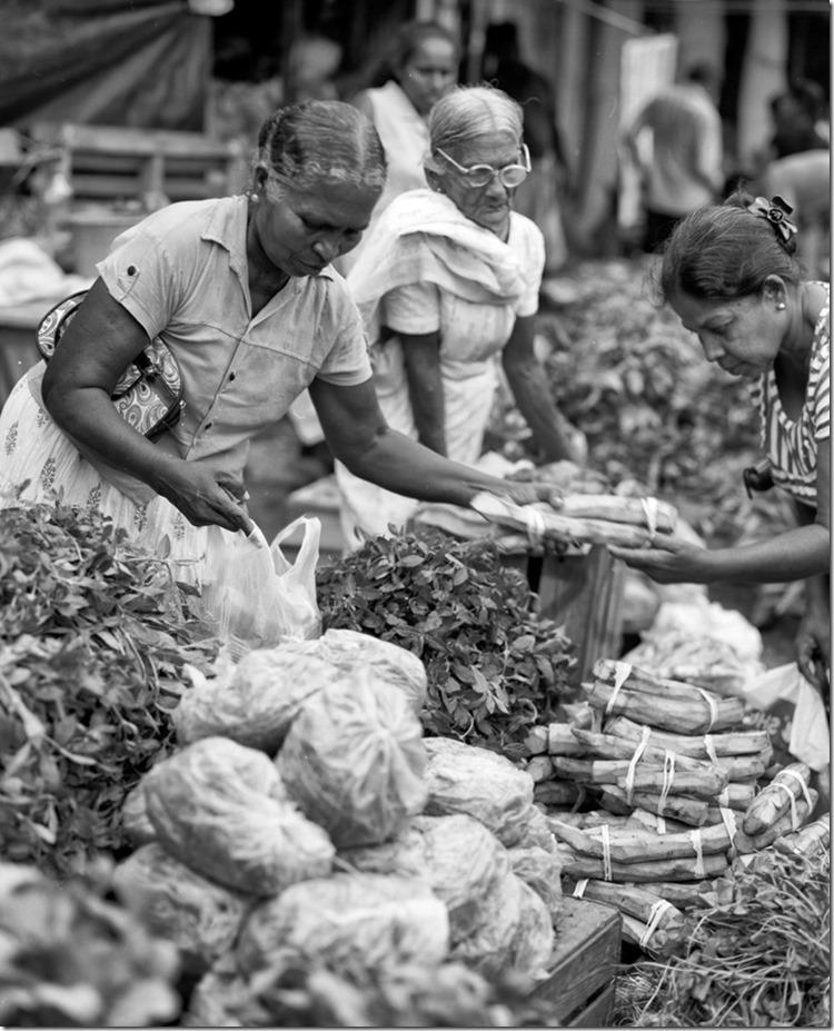 Lanka (90) (Andere)