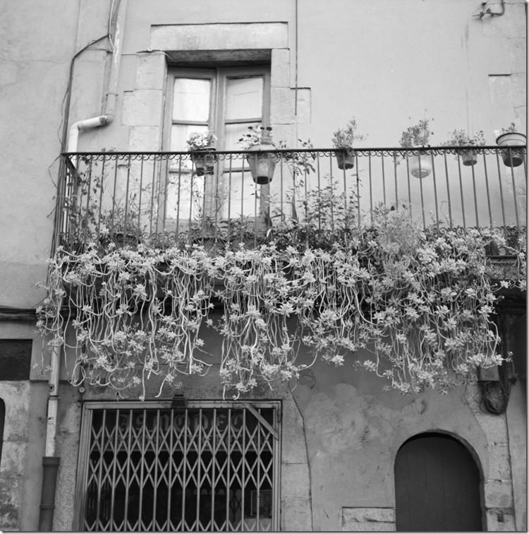 Girona (13)