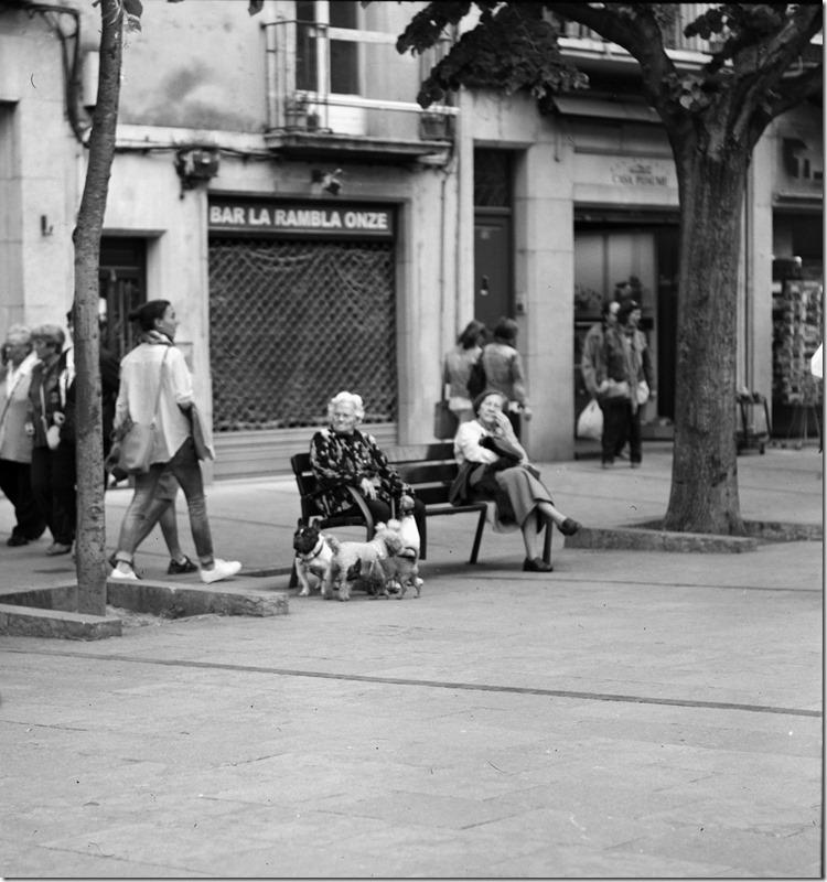 Girona (16)