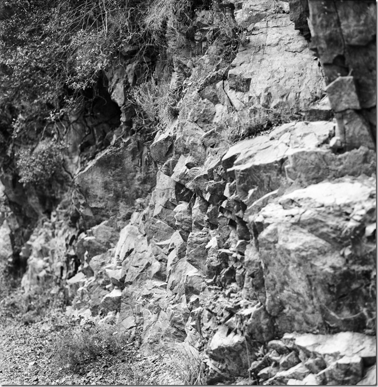Sant Aniol Hike  (11)