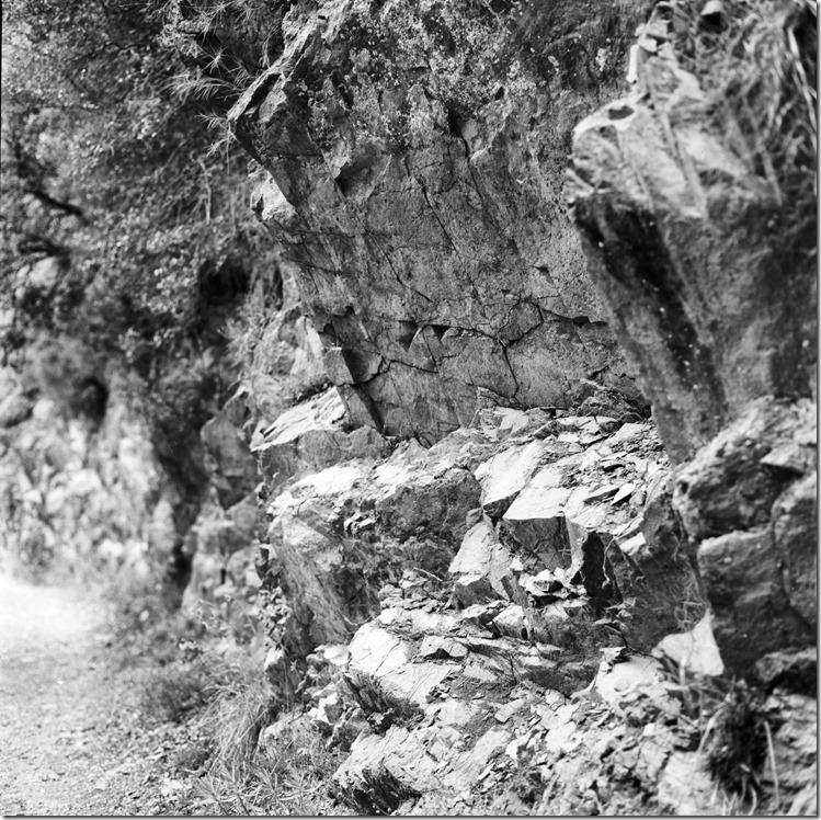 Sant Aniol Hike  (12)