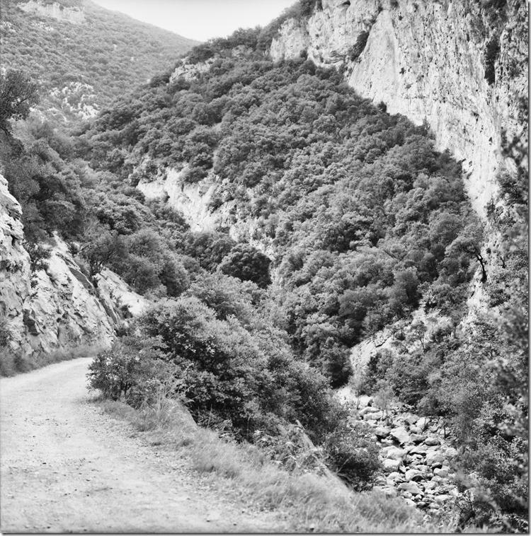 Sant Aniol Hike  (18)