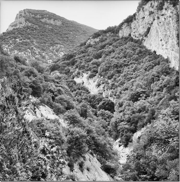 Sant Aniol Hike  (19)