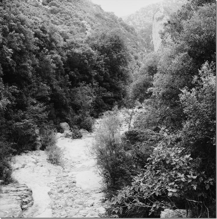 Sant Aniol Hike  (3)
