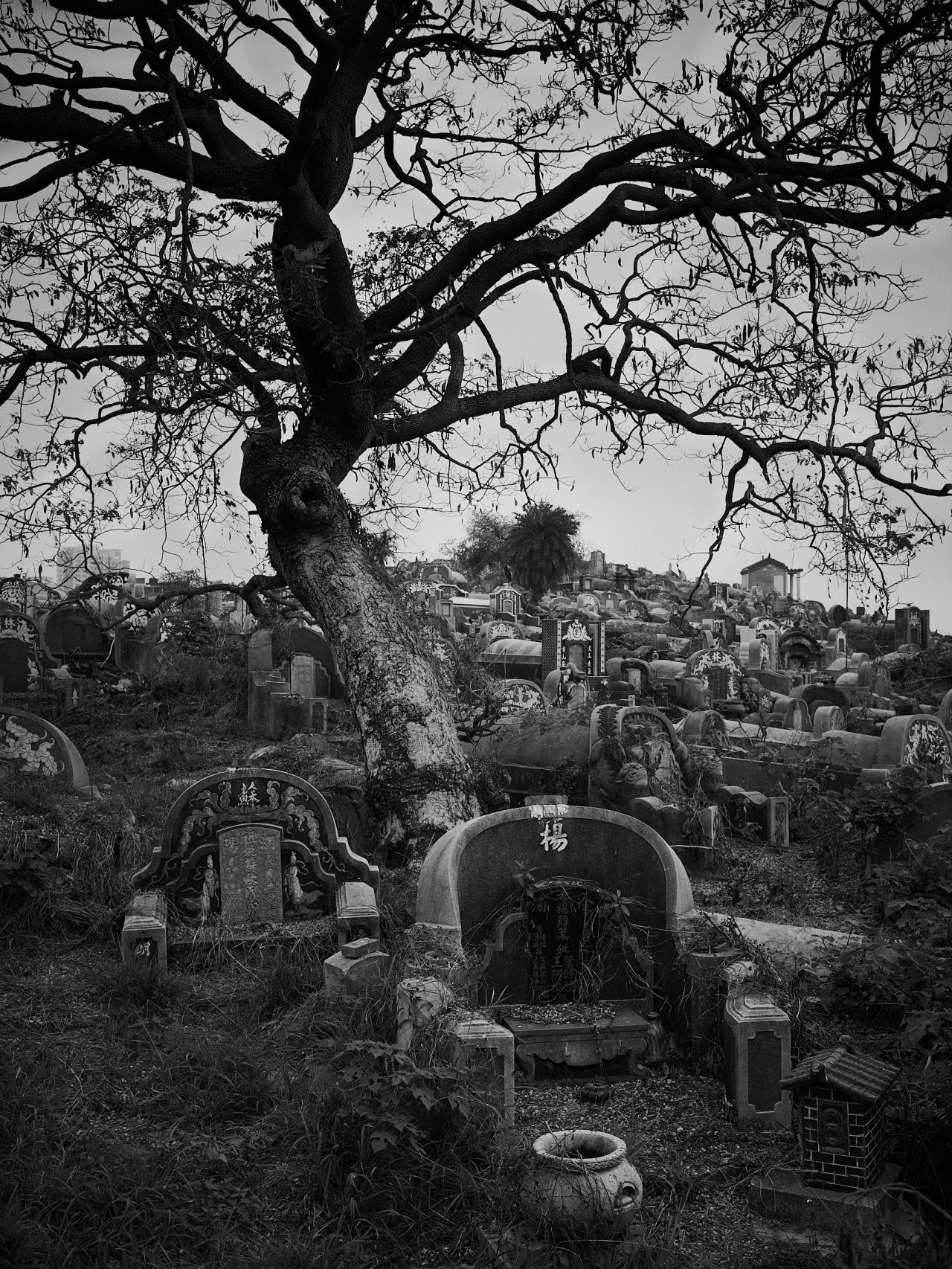 Tainan – Anping OldGraveyard